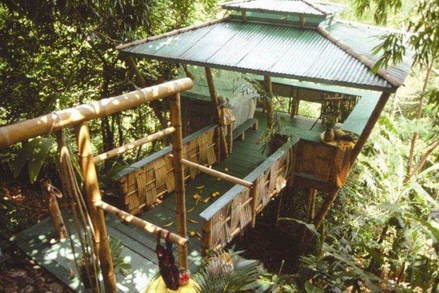 Tropical Treehouse Sunset Hooch
