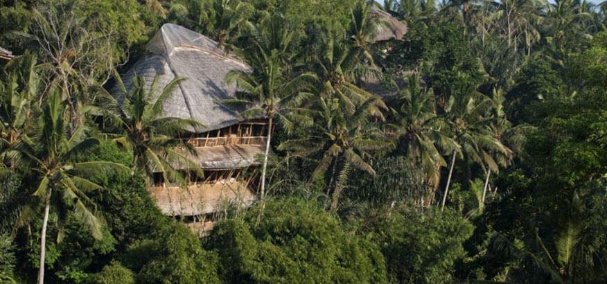 Baumhaushotel Green Village Sunrise House