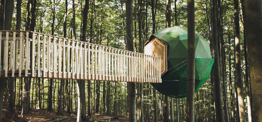 robins nest baumhaushotel lasst euch in eine andere welt. Black Bedroom Furniture Sets. Home Design Ideas