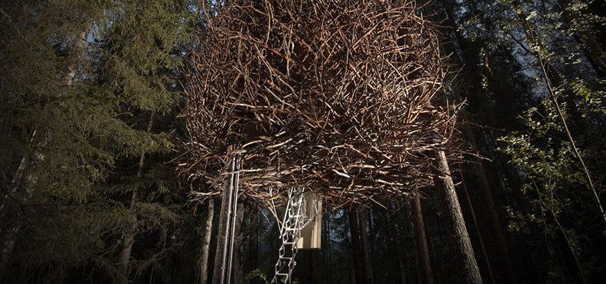 Treehotel Birds Nest bei Nacht