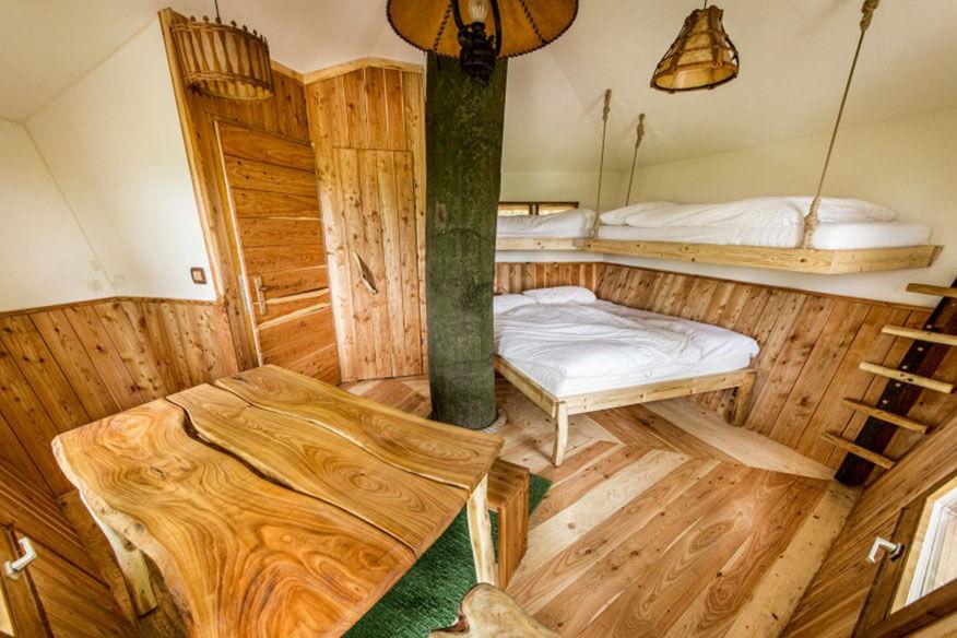 Robins Nest Stammbaumhaus Wohnbereich