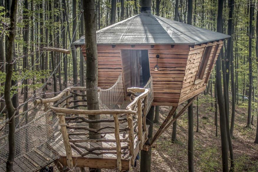 Robins Nest Stammbaumhaus