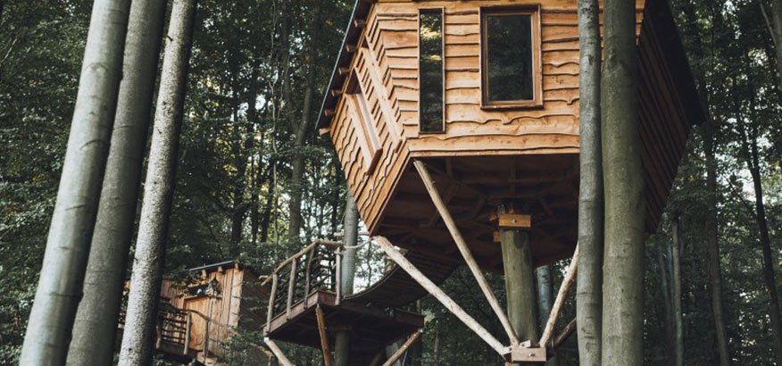 Robins Nest Baumhaushotel Lasst Euch In Eine Andere Welt Entfuhren