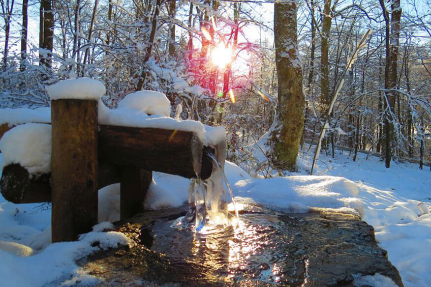 Siegtal Baumhaus Natursteig Sieg Winter