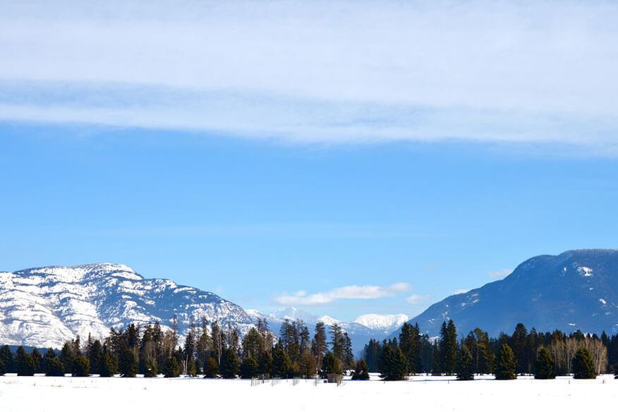 Montana Treehouse Retreat Landschaft