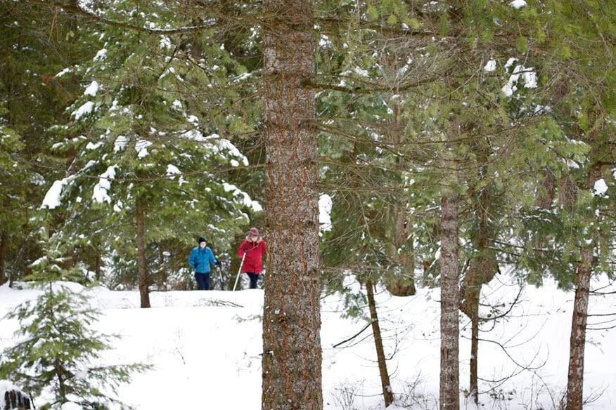 Montana Treehouse Retreat Freizeitaktivitäten