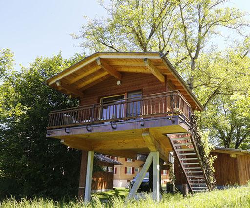 wurzelbaumhaus in der schweiz